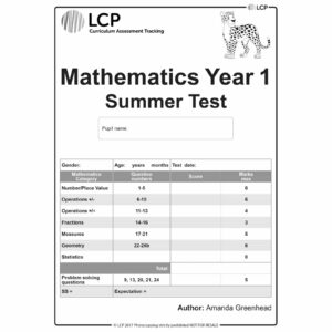 lcp mathematics year1 summer test