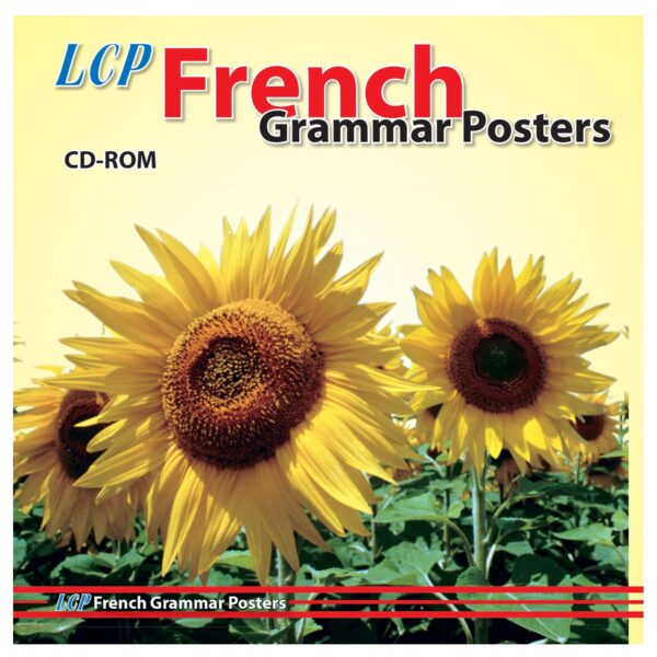 lcp french grammar posters